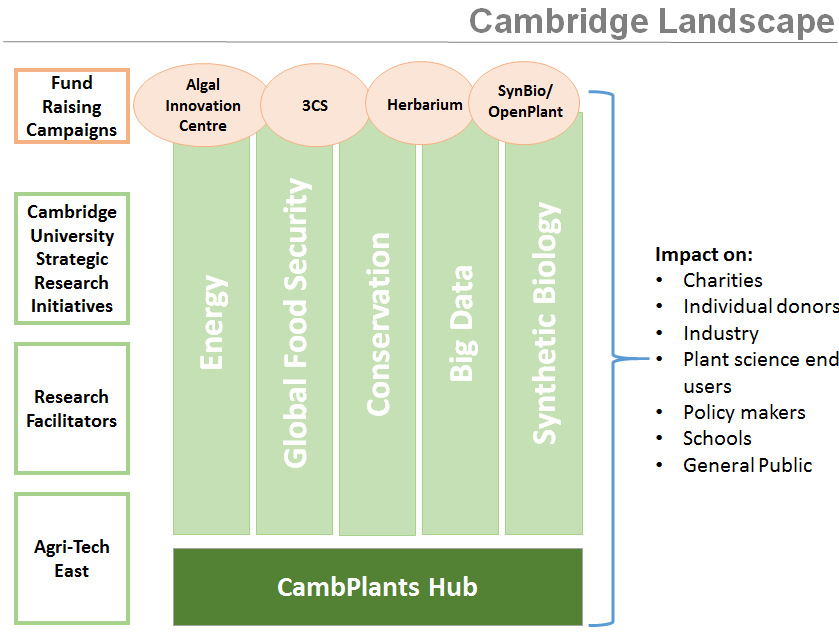 Cambplants Landscape