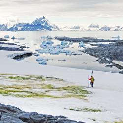 matt davey antarctica